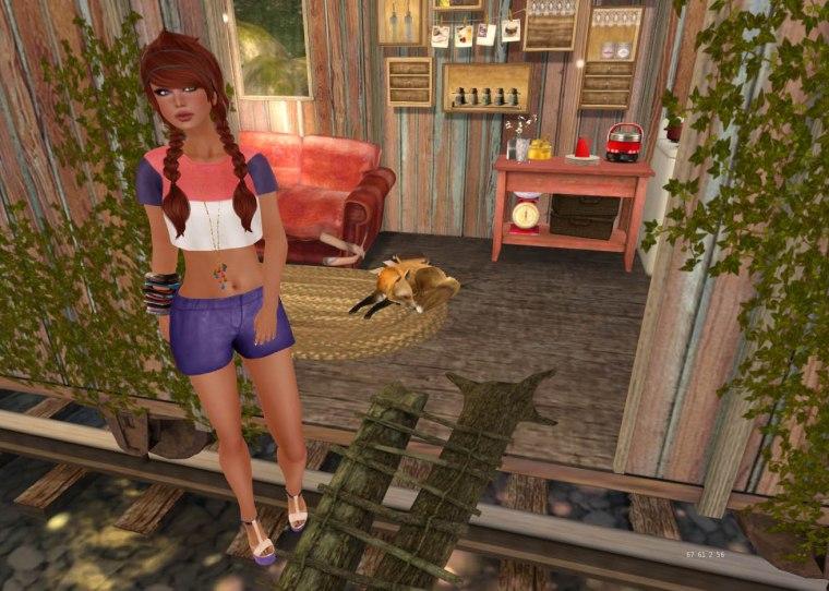 Foxy6_001
